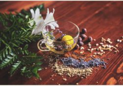 What is Ayurvedic? Health benefits of Ayurvedic treatment